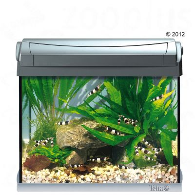 aquarium pour d butant prix avantageux chez zooplus kit complet aquarium tetra aquaart 20 l. Black Bedroom Furniture Sets. Home Design Ideas
