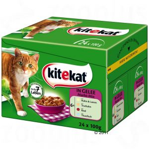 Image result for PHOTO KIT ET KAT CHAT