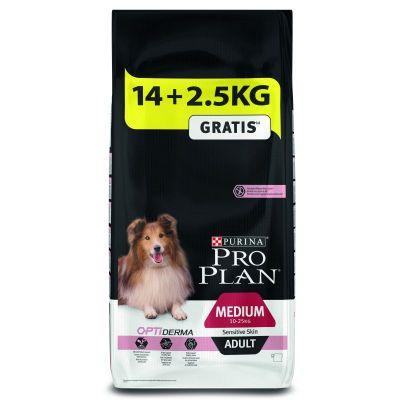 Best Large Breed Dog Food For Sensitive Skin