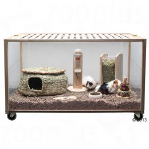 Living World Green Eco Habitat Small