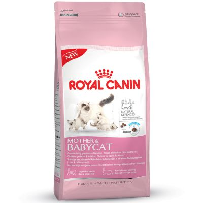 lot de croquettes pour chat royal canin. Black Bedroom Furniture Sets. Home Design Ideas