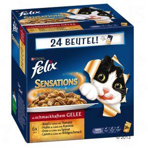 Nassfutter für Katzen