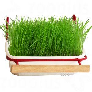 Корм дополнительный корм mucki трава для