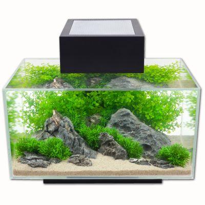 Nano Aquarium Fluval Edge I 192 Prix Avantageux Chez Zooplus