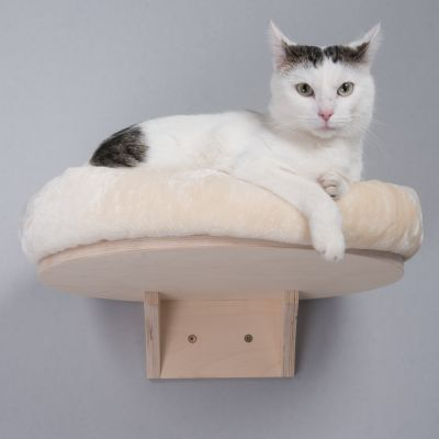 Wall Mounted Cat Beds Uk