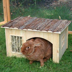 Nature plus hus med h rack - Casas para conejos enanos ...