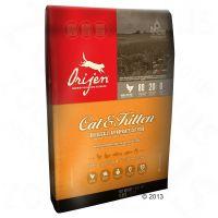 Orijen dry food for cats