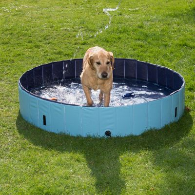 Dog pool keep cool piscine pour chien zooplus for Piscine plastique rigide