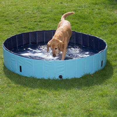 Autre jouet d 39 eau pour chien prix avantageux chez for Piscine pour grand chien