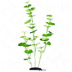 plante artificielle pour aquarium prix avantageux chez zooplus. Black Bedroom Furniture Sets. Home Design Ideas