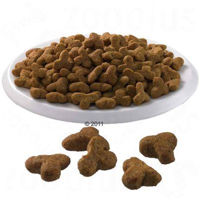 Taste Of Nature Cat Food