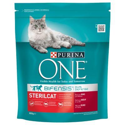 Wheat Free Dry Cat Food