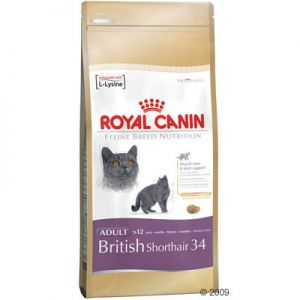 royal canin british shorthair adult ra o para gatos. Black Bedroom Furniture Sets. Home Design Ideas