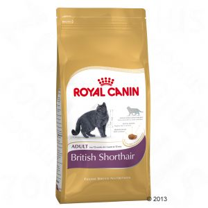 royal canin british shorthair adult great deals at zooplus. Black Bedroom Furniture Sets. Home Design Ideas