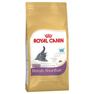 royal canin kitten british shorthair tanio w zooplus. Black Bedroom Furniture Sets. Home Design Ideas