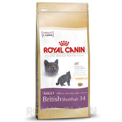 royal canin british shorthair croquettes pour chat zooplus. Black Bedroom Furniture Sets. Home Design Ideas