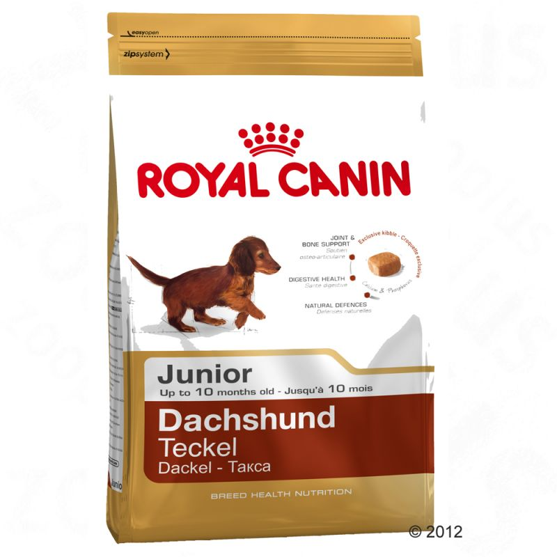 royal canin dachshund junior free p p on orders 29 at zooplus. Black Bedroom Furniture Sets. Home Design Ideas