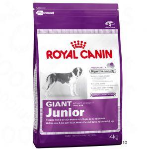7810_royalcanin_giant_junio_1.jpg