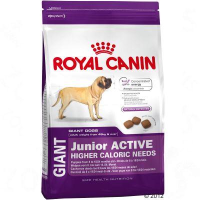Royal Canin Giant Junior сухой корм для подросших щенков собак очень крупных размеров