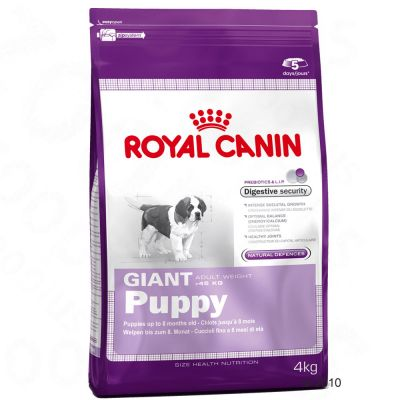 great deals on royal canin size giant dog food at zooplus. Black Bedroom Furniture Sets. Home Design Ideas