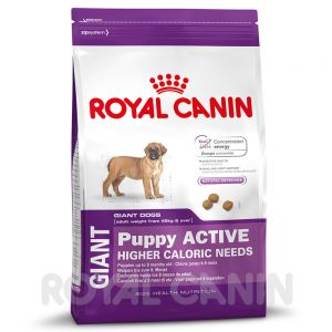 royal canin size zu discountpreisen bei royal canin giant puppy active. Black Bedroom Furniture Sets. Home Design Ideas