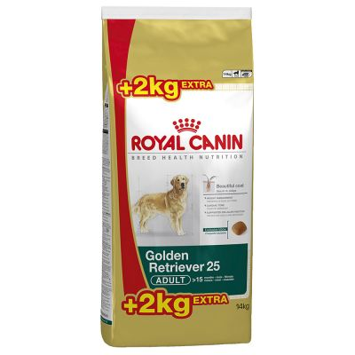 royal canin breed golden retriever 25 adult tanio w zooplus. Black Bedroom Furniture Sets. Home Design Ideas
