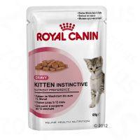 Comida húmida Royal Canin para gatos