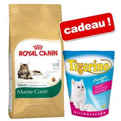 croquettes pour chat royal canin prix avantageux chez zooplus royal canin maine coon 10 kg. Black Bedroom Furniture Sets. Home Design Ideas