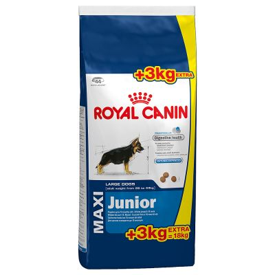 royal canin maxi junior tanio w zooplus. Black Bedroom Furniture Sets. Home Design Ideas