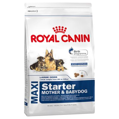 royal canin maxi starter mother babydog hundefutter g nstig bei zooplus. Black Bedroom Furniture Sets. Home Design Ideas