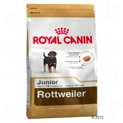 royal canin rottweiler junior great deals at zooplus. Black Bedroom Furniture Sets. Home Design Ideas