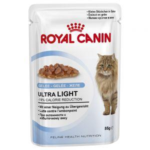 Royal Canin cat wet food