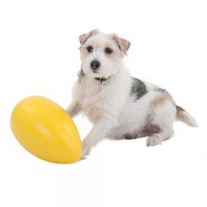 Running Egg kutyajáték