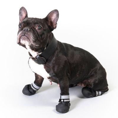 Ботинки для собаки зимняя