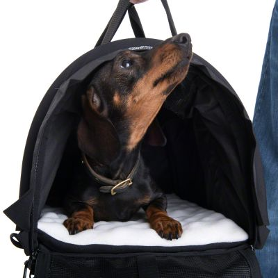 sturdibag black sac de transport pour chat et petit chien zooplus. Black Bedroom Furniture Sets. Home Design Ideas