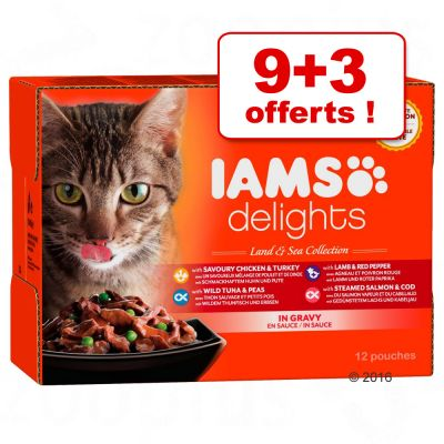 Iams Senior Wet Cat Food