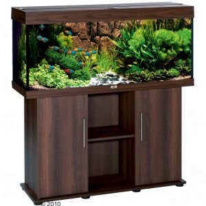 Set acquario supporto juwel rio 240 zooplus for Acquari completi offerte