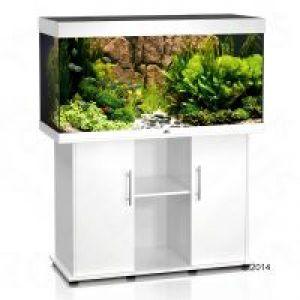Set acquario supporto juwel rio 300 for Acquari completi offerte