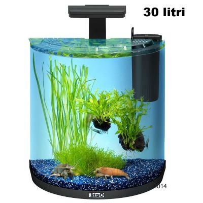 Set acquario tetra aquaart explorer line halfmoon zooplus for Acquario 90 litri