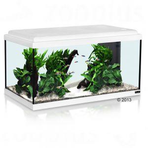 Set acquario aquatlantis 60x30x30 led zooplus for Acquari completi offerte