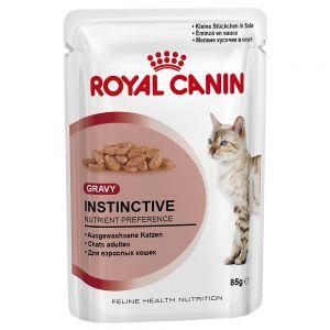 Royal Canin Katzenfutter nass