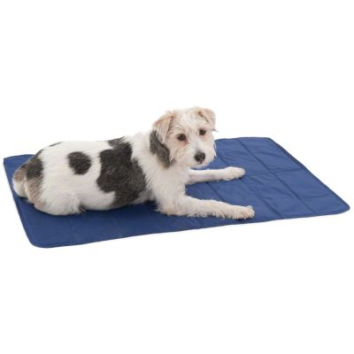 Tapis rafra chissant pour chien keep cool - Tapis rafraichissant pour chien ...