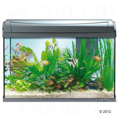 tetra aqua art aquarium complete set 60l free p p 29. Black Bedroom Furniture Sets. Home Design Ideas