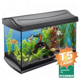 tetra aquaart aquarium 60 liter. Black Bedroom Furniture Sets. Home Design Ideas