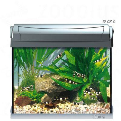 tetra aquarien g nstig bei zooplus tetra aquarium aquaart 20l. Black Bedroom Furniture Sets. Home Design Ideas