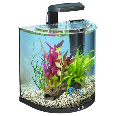 Tetra aquaart explorer line halfmoon aquarium komplett set for Poisson aquarium 30l