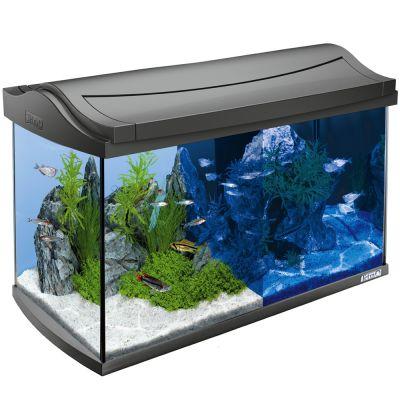 tetra aquarium goedkoop bij zooplus tetra aquaart led complete aquariumset 60 l. Black Bedroom Furniture Sets. Home Design Ideas