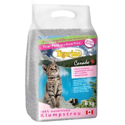 Best Cat Litter For Strong Urine Smell Uk