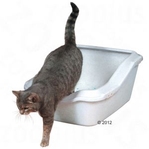 Cat litter dilemma, please advise - MoneySavingExpert com Forums