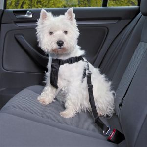 Trixie Dog Car Harness Free P P On Orders 163 29 At Zooplus